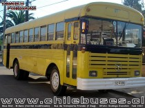 Blue Bird - M. Benz (Frontal modificado)   /  Bus de Transporte Privado (V Reg)