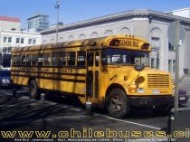 Blue Bird - International  /  Bus I. Municipalidad de Cañete