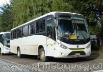 Marcopolo Ideale 770 - M. Benz | Bus Forestal Safco Ltda.
