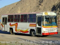 Thamco Scorpion - M.Benz / Bus Urbano Copiapó