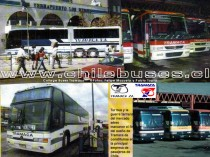 Collage Buses Tramaca