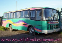 Nielson Diplomata 310 - M. Benz | Buses LCT