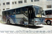 Metalpar Yelcho - M. Benz | Buses Via Costa