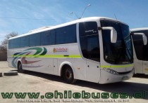 Comil Campione 3.45 - M. Benz | Buses Chilebus