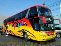 Comil Campione 4.05 HD - Volvo | Buses Kenny Bus
