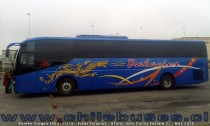 Golden Dragon XML6137J13 | Buses Palacios