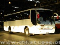 Comil Campione 3.45 - Scania | Buses Covalle