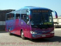Irizar Century III - Scania | Buses Intercomunal