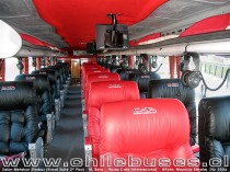 Salón 2do Piso Metalsur Starbus - M. Benz  /  Buses Cata Internacional Royal Suite