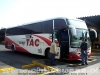 Marcopolo Paradiso 1200  /  Buses Tac