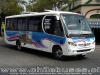 Comil Pia - M. Benz  /  Buses Buin Paine (Gama Bus)