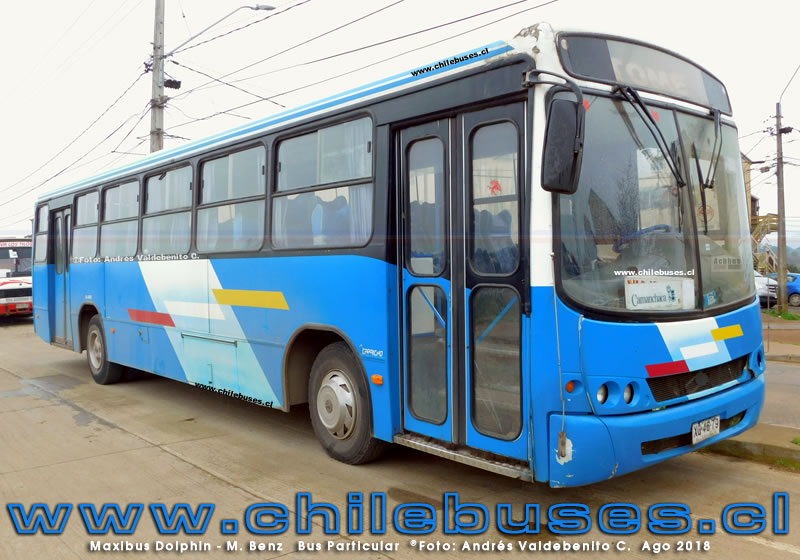 Maxibus Dolphin - M. Benz | Bus Particular (Tome)