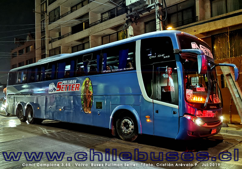 Comil Campione 3.65 - Volvo | Buses Pullman Setter