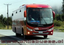 Comil Campione 3.25 - M. Benz | Buses DyR