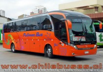 Neobus New Road 360 N10 - M. Benz | Buses Pullman Bus