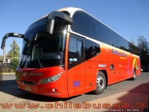 Young Man Starliner JNP6126L | Buses Pullman Bus