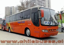 Comil Campione 3.45 - M. Benz | Buses Elohim