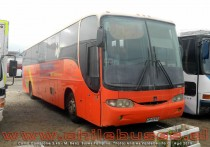 Comil Campione 3.45 - M. Benz | Buses Pampino