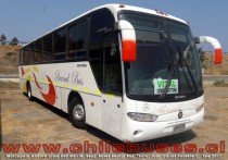 Marcopolo Andare Class 850 G6 - M. Benz | Buses Bernal Bus