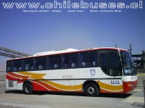 Marcopolo Andare - M.Benz / Buses Sokol
