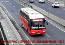 Ruta CH-146 - Young Man JNP6126L Starliner | Buses Pullman Bus