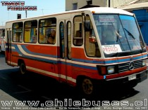 Inrecar - M. Benz (Con Frontal de Caio Carolina)  /  Bus de Transporte Privado (V Reg)