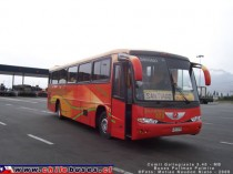 Comil Galleggiante 3.40 - M. Benz | Buses Pullman Palmira