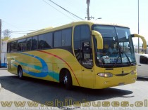 Comil Campione 3.45 - M. Benz | Buses Casther