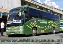 King Long  - XMQ6117Y  |  Buses Jeldres