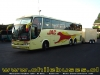 Marcopolo Paradiso 1200 - M. Benz  /  Buses Jac