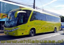 Marcopolo Paradiso 1050 G7 - Scania | Buses Talmocur