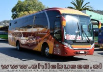 Neobus New Road 360 N10 - M. Benz | Buses Contimar