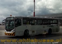 Marcopolo Gran Viale - Hino  |  Buses Dolphin Express S.A (Colombia)